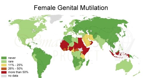 "female genital mutilation a re post toritto for those of you any questions or doubts let me give you a brief synopsis of what fgm entails these details are from ""midwives magazine"" 2010"